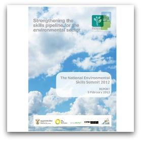 NESS-2012-Report-GreenMatter-724x1024 (Small)