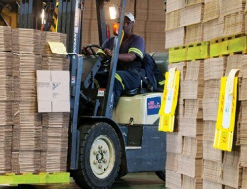 Skills for Greening Fibre Based Packaging